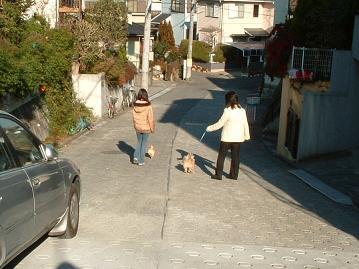 お散歩小.JPG